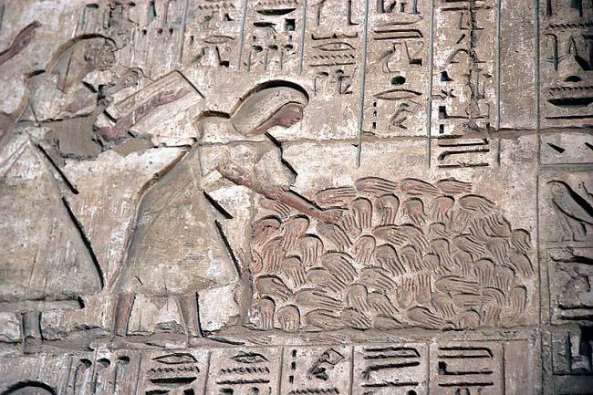 Relieve del templo de Medinet Habu en el que se ven todas las manos amputadas por Ramsés III a sus enemigos