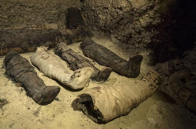 Ejemplos de momificación egipcia halladas en una cámara funeraria
